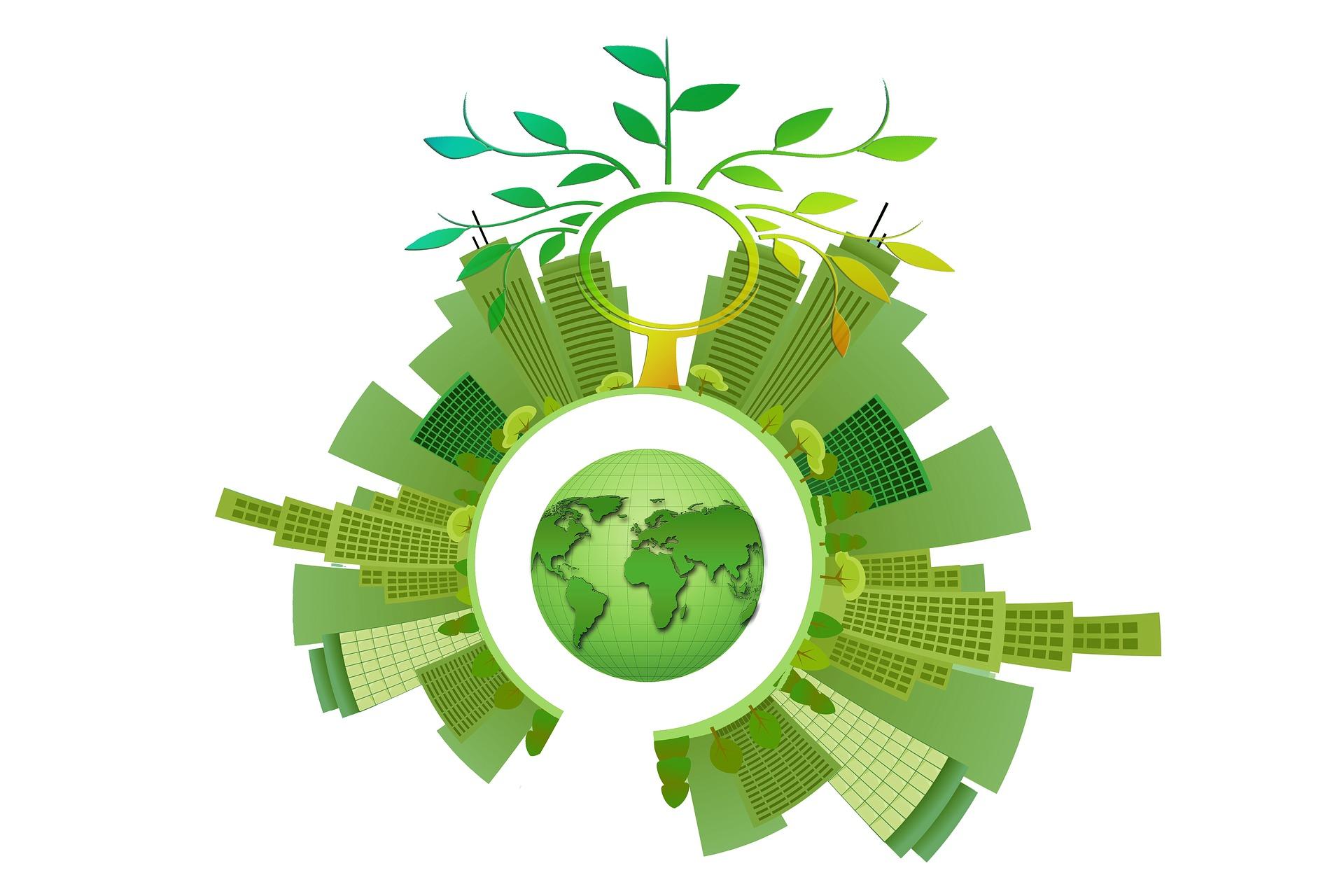 sustainable development government